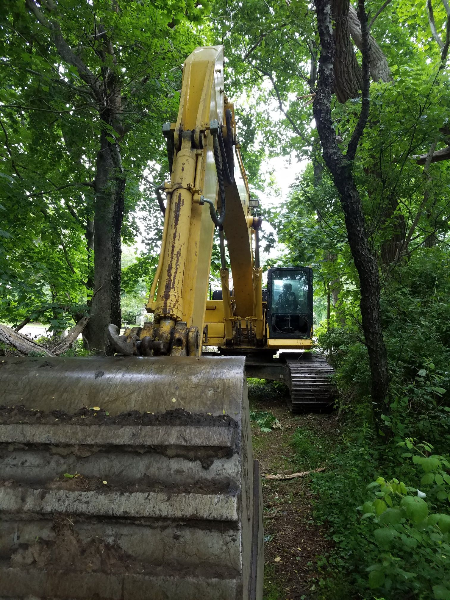 Engineer Approved Drainage Plans Threaten Sensitive Natural Habitat  In Long Island's North Fork