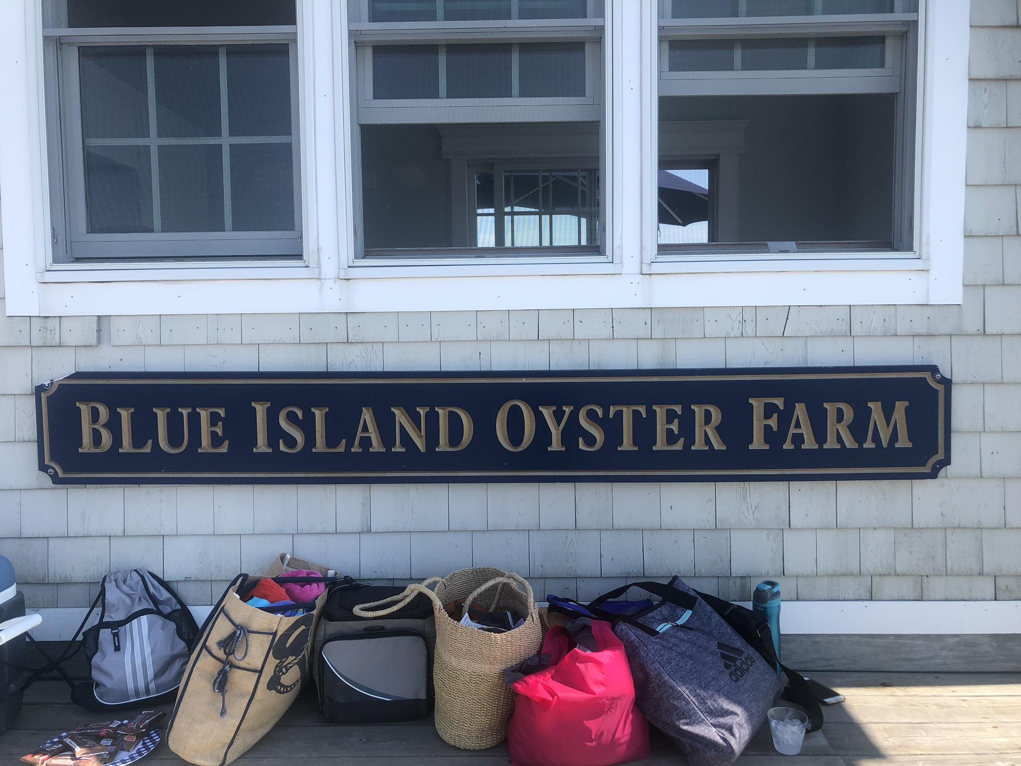 A Trip To Blue Island Oyster Farm
