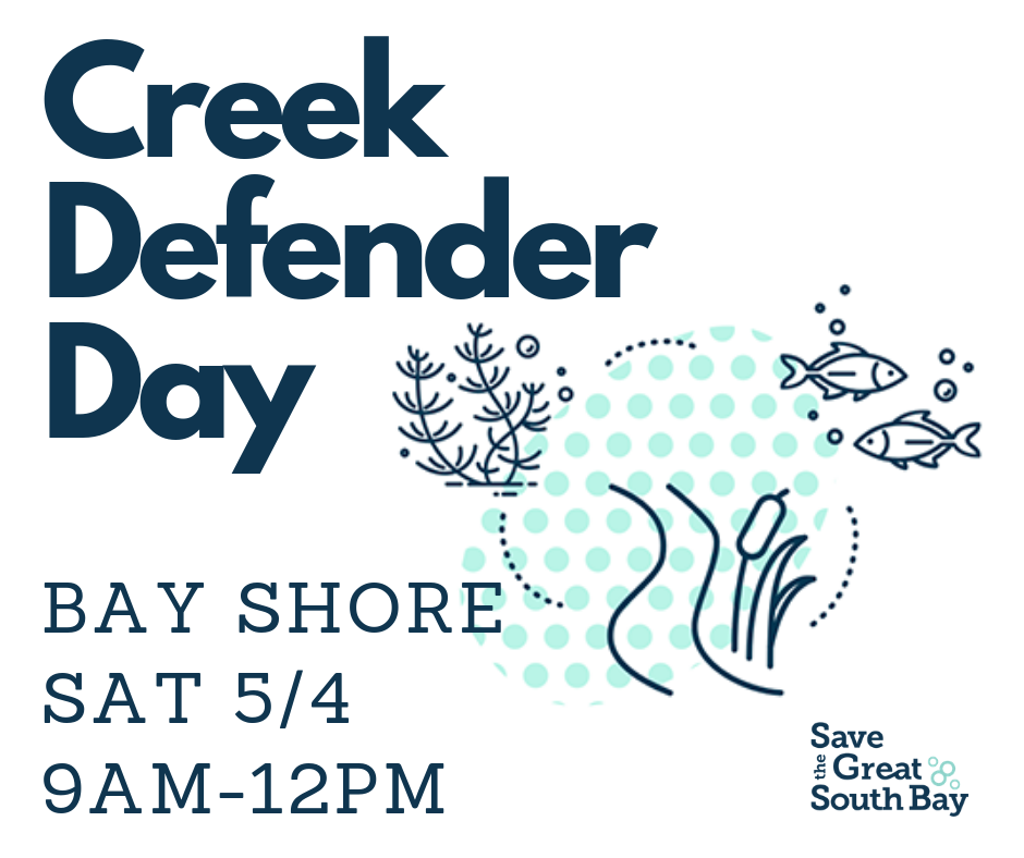 Bay Shore Creek Defender Day — Video Update