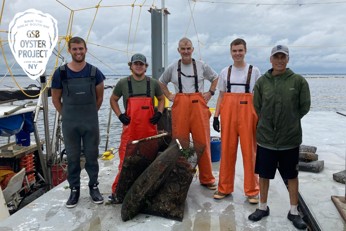 The GSB Oyster Project