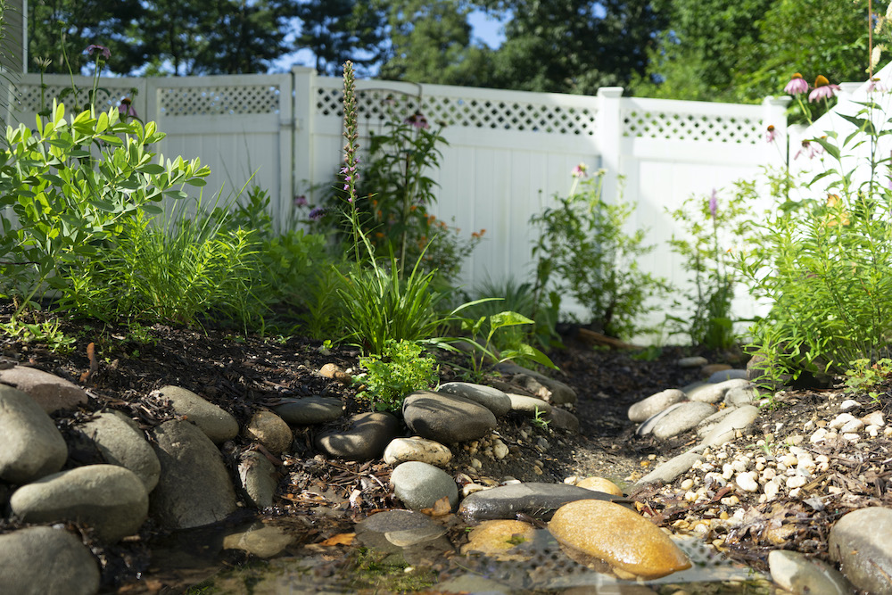 Top 3 Elements of a Bay Friendly Yard
