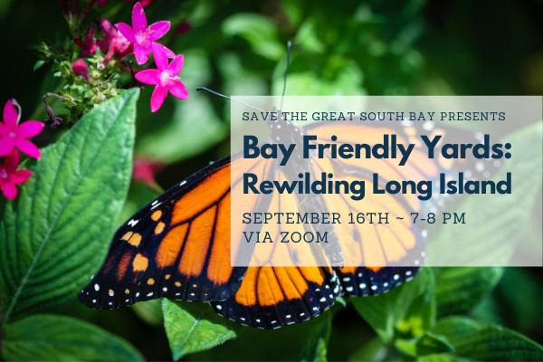 Bay Friendly Yards: Rewilding LI