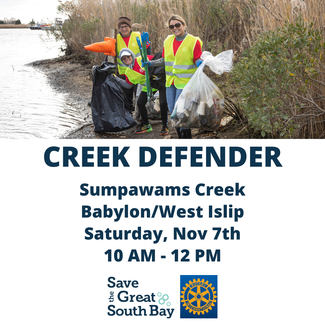 Babylon Rotary Clean Up