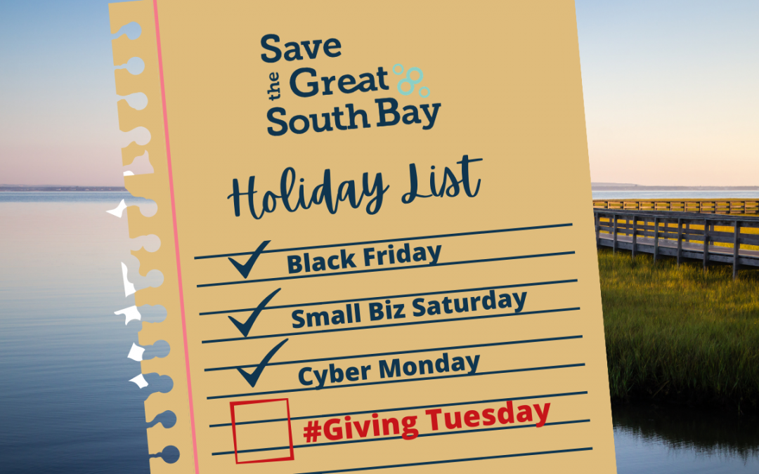 Help Save The Bay on GivingTuesday