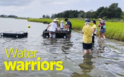 Water Warriors {Yep, That's Us}