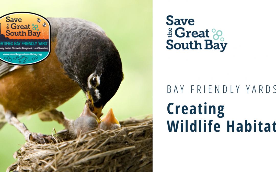 Bay Friendly Yards: Creating Wildlife Habitat