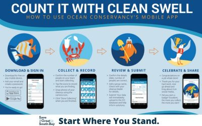 A Swell App To Measure Debris