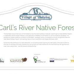 Carls_river_wetland_commemoration_v3b_outline